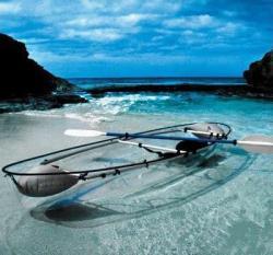 Haifischbesichtigung im transparenten Kanu