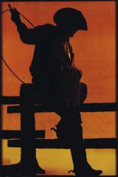 Richard Prince Bild mit Cowboy