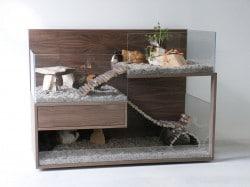 Luxus fürs Meerschweinchen