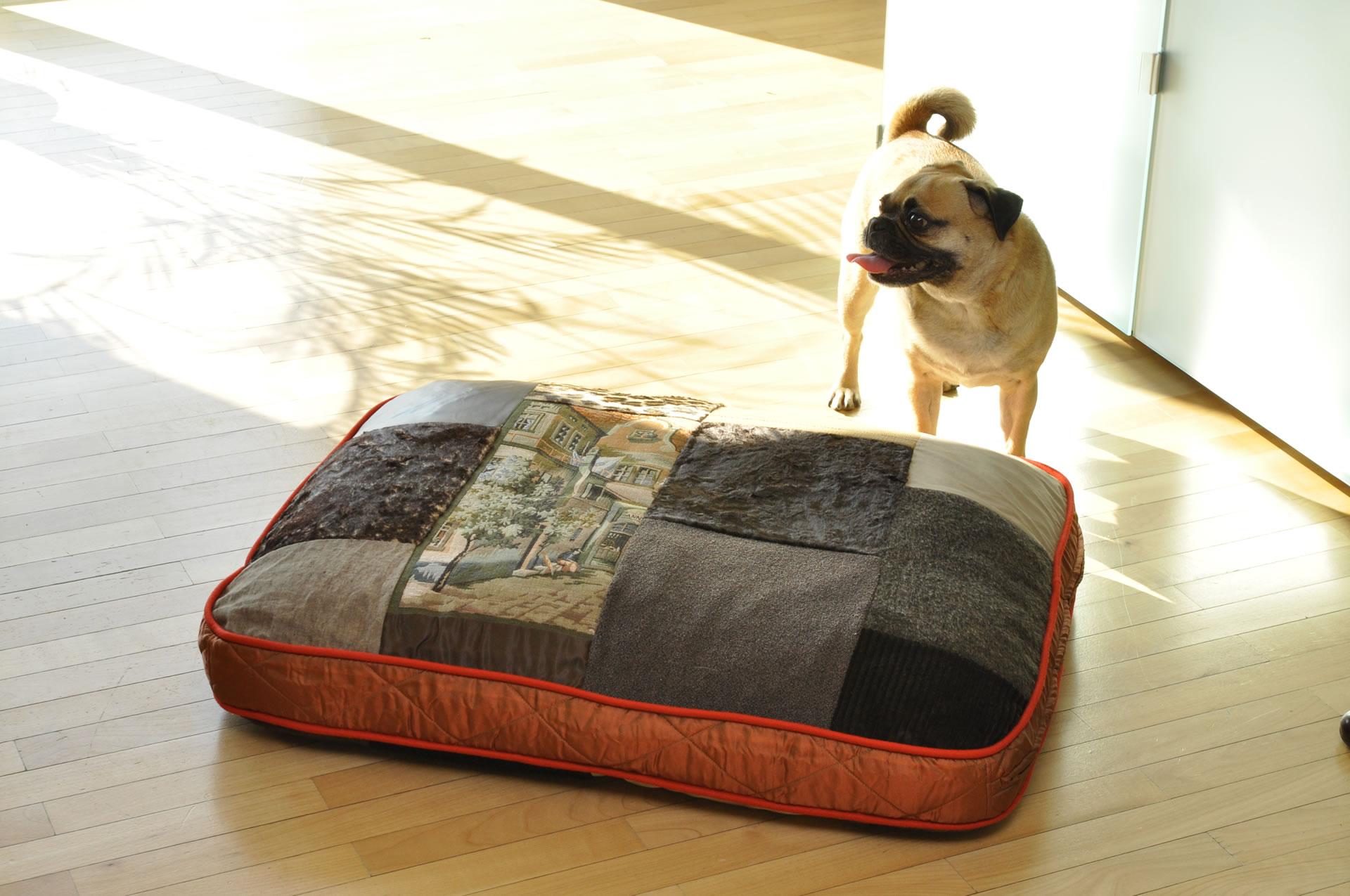 orthop disches hundekissen von pet interios. Black Bedroom Furniture Sets. Home Design Ideas