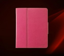 Cartier iPad 2 Case