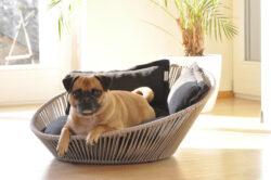 Siro Twist - Eine runde Sache für den Hund