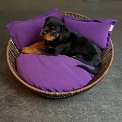 orthopädisches Hundebett von pet-interiors.de