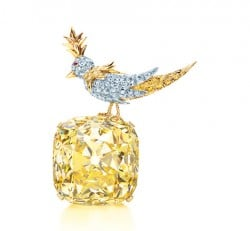 The Tiffany Diamond Bird on a Rock setting (Carlton Davis)