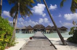 Gili Lankanfushi Resort - Malediven: Robinson Crusoe Feeling in Luxusambiente