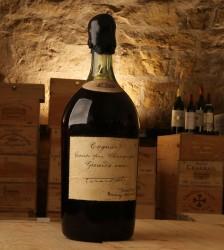 Cognac aus dem Jahre 1875 - einmalig