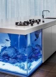 Kochen auf einer Aquariuminsel - Kolenik's Ocean