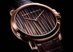 Harry Winston Midnight Feathers Automatic 42 mm
