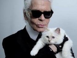 Wir stellen vor: die reichste Katze der Welt - Karl Lagerfelds Katze Choupette