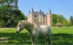 Laval, Frankreich: das romantischste Luxusschloss mit verspielten Türmen