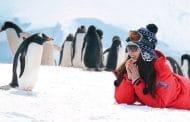 Eine Schiffreise in die Antarktis – erleben Sie es persönlich!