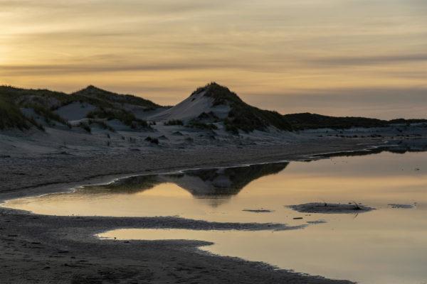 Die Dünen von Norderney