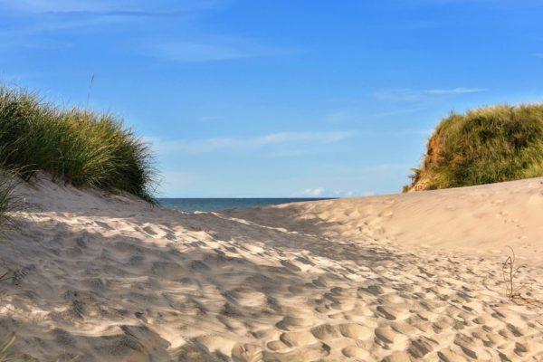 Sommerurlaub in Dänemark zwischen Traumstränden und ruhiger Natur