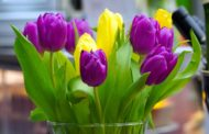 Blumenstrauß bequem online bestellen