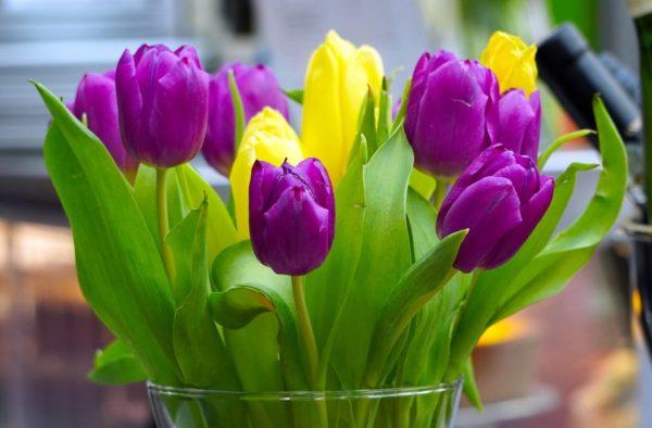 Blumenstrauß mit Frühlingsblumen