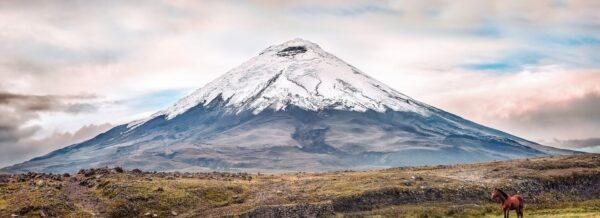 Ecuador und der Bitcoin